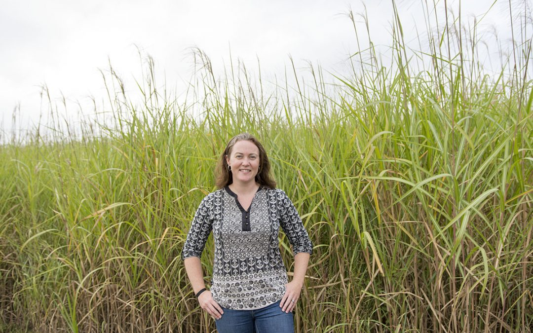 A Love for Nature: Caitlin Moore Uses Micrometeorology to Study Crops, Fields