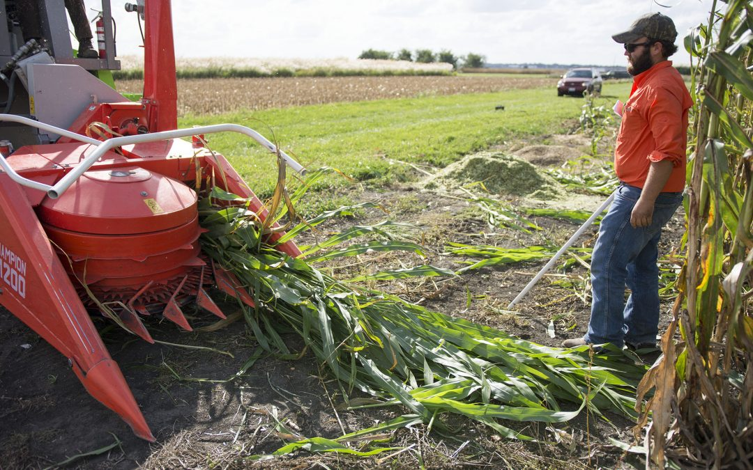 August Schetter: From Family Farm to University Fields