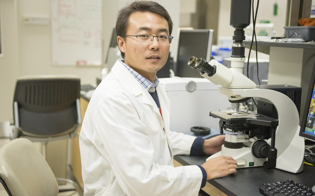 Shuai Li: A Passion for Plant Physiology
