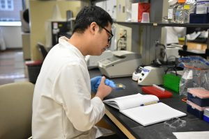 CABBI researcher Xueyi Xue studies a notebook in the lab.