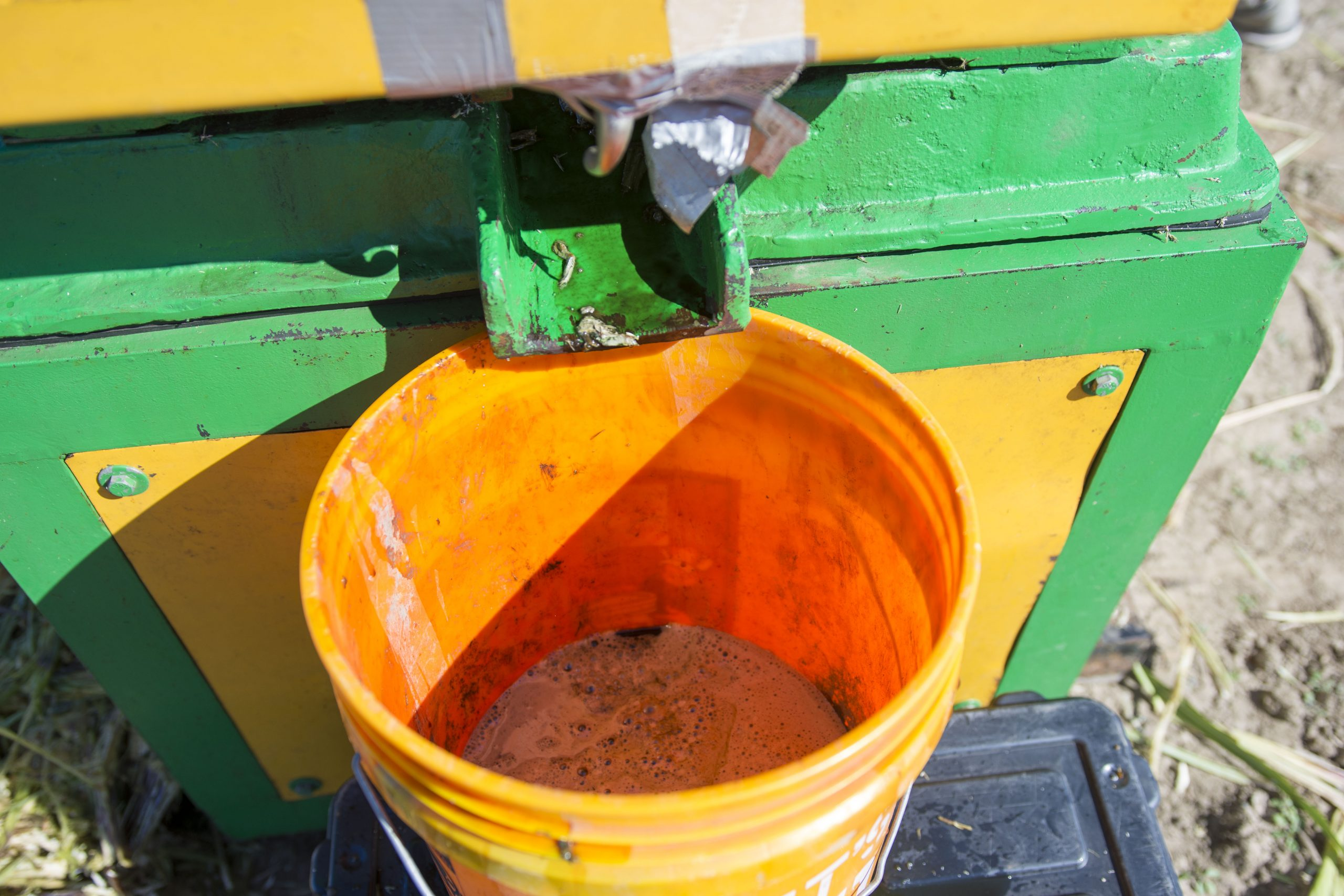 After processing in the juicer, an oil-sugar mixture derived from the oilcane biomass is transported to IBRL.