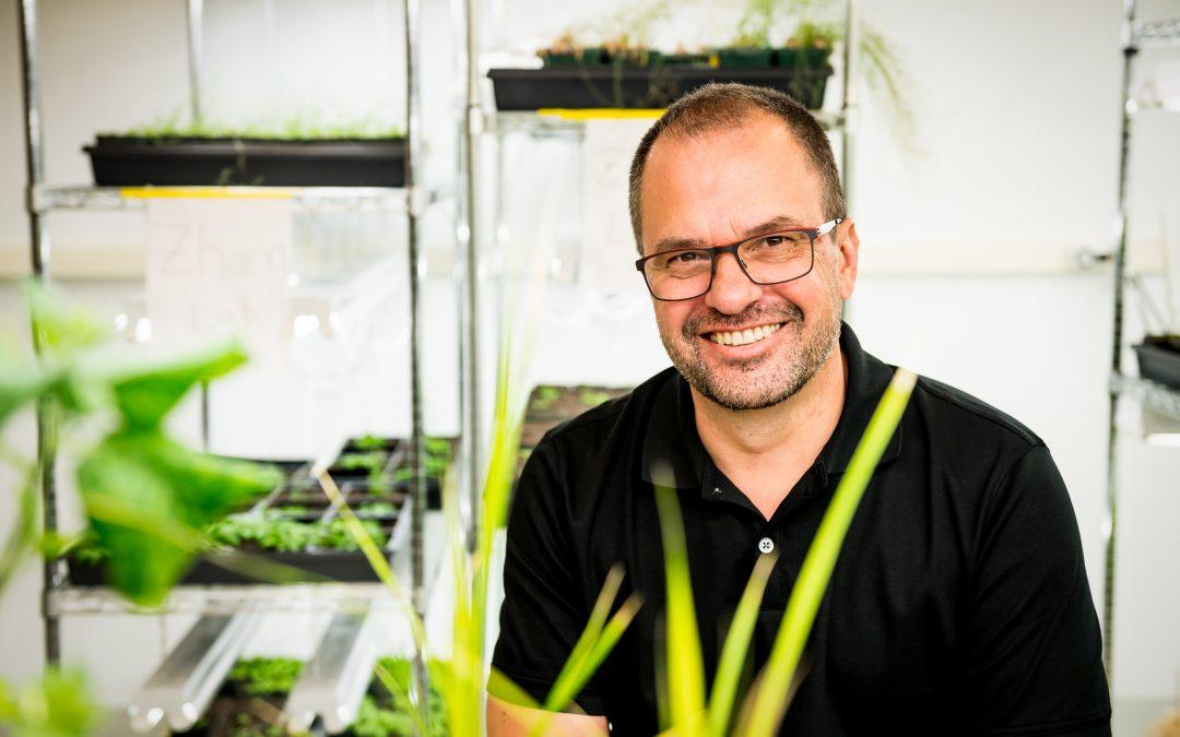 Genetics Expert Dan Voytas Joins CABBI Feedstock Production Team