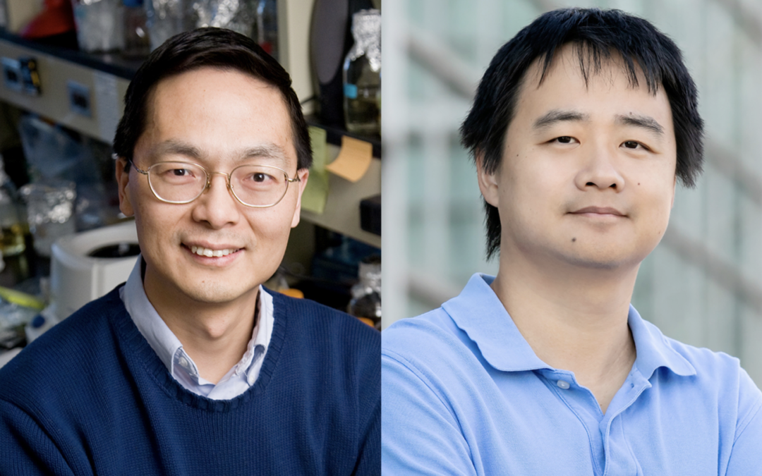 CABBI Researchers Demonstrate Deep-Learning Algorithm to Accelerate Protein Engineering